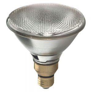 Most energy efficient outdoor flood light bulbs httpnawazsharif most energy efficient outdoor flood light bulbs mozeypictures Gallery
