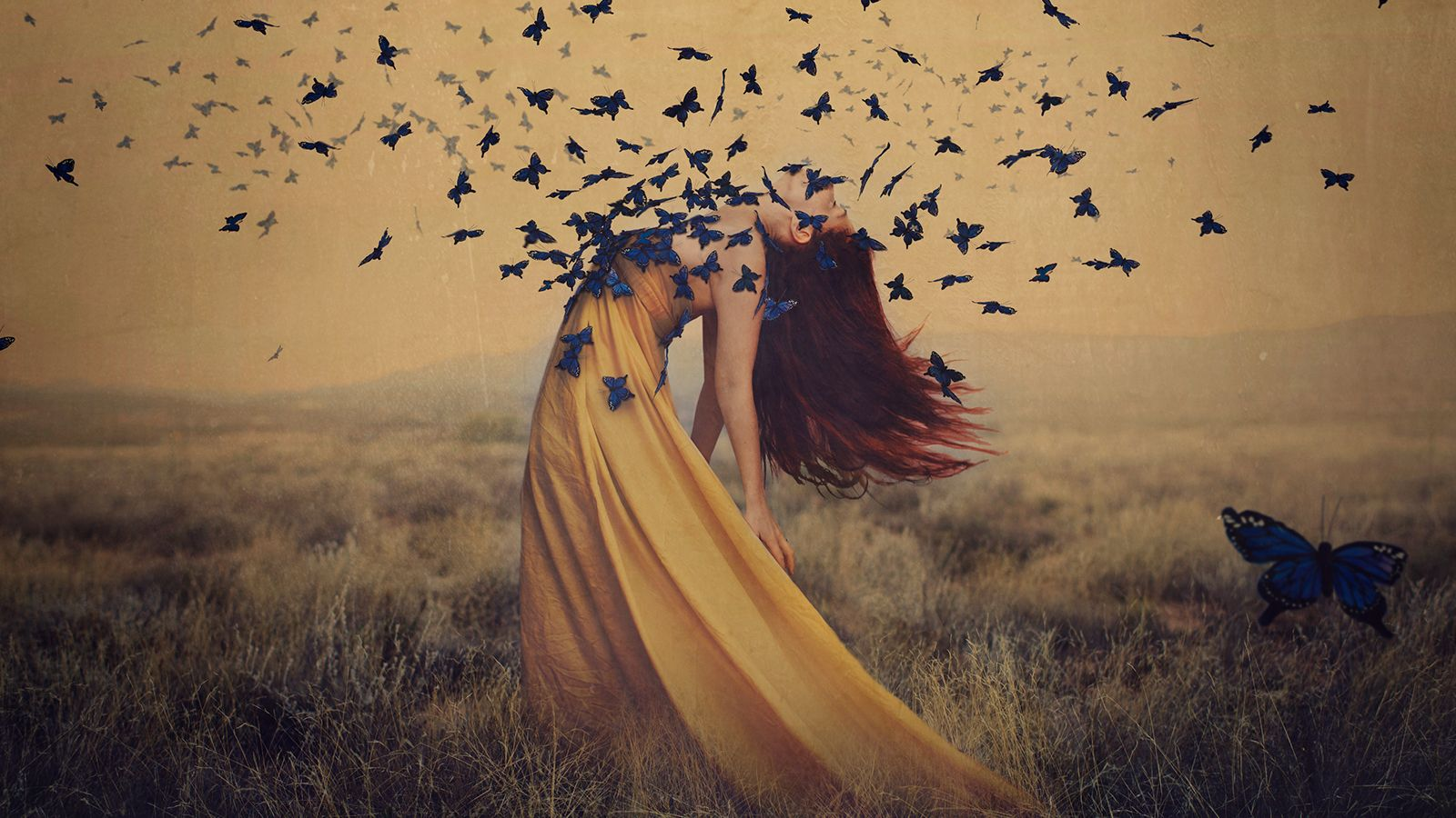 Fine Art Photography The Complete Guide With Brooke Shaden Art Photography Fine Art Fine Art Photography