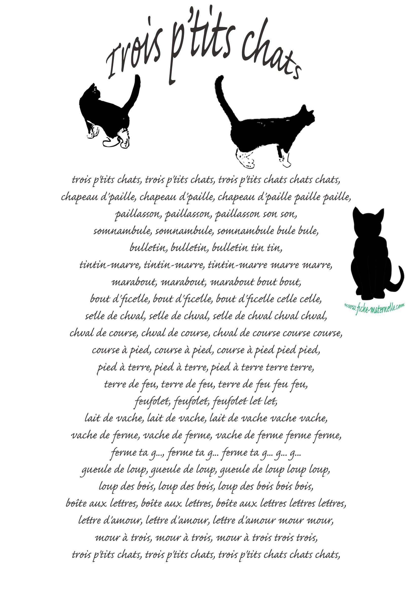 parole chanson 3 petit chat