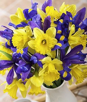 I don't know why I didn't think of this to incorporate purple into my wedding bouquet!  Perfectly springy!  :) Possible wedding bouquet: irises and daffodils