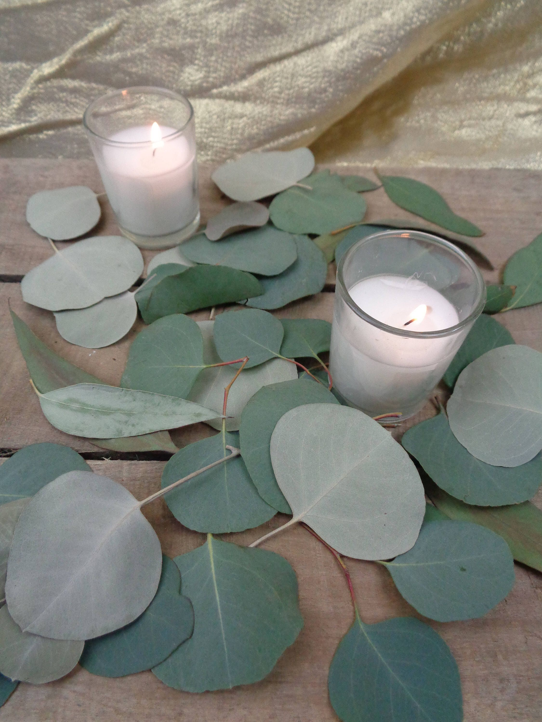 DRIED Table Scatter, Eucalyptus Table, Toss Petals, Table Runner, DRIED  Eucalyptus,