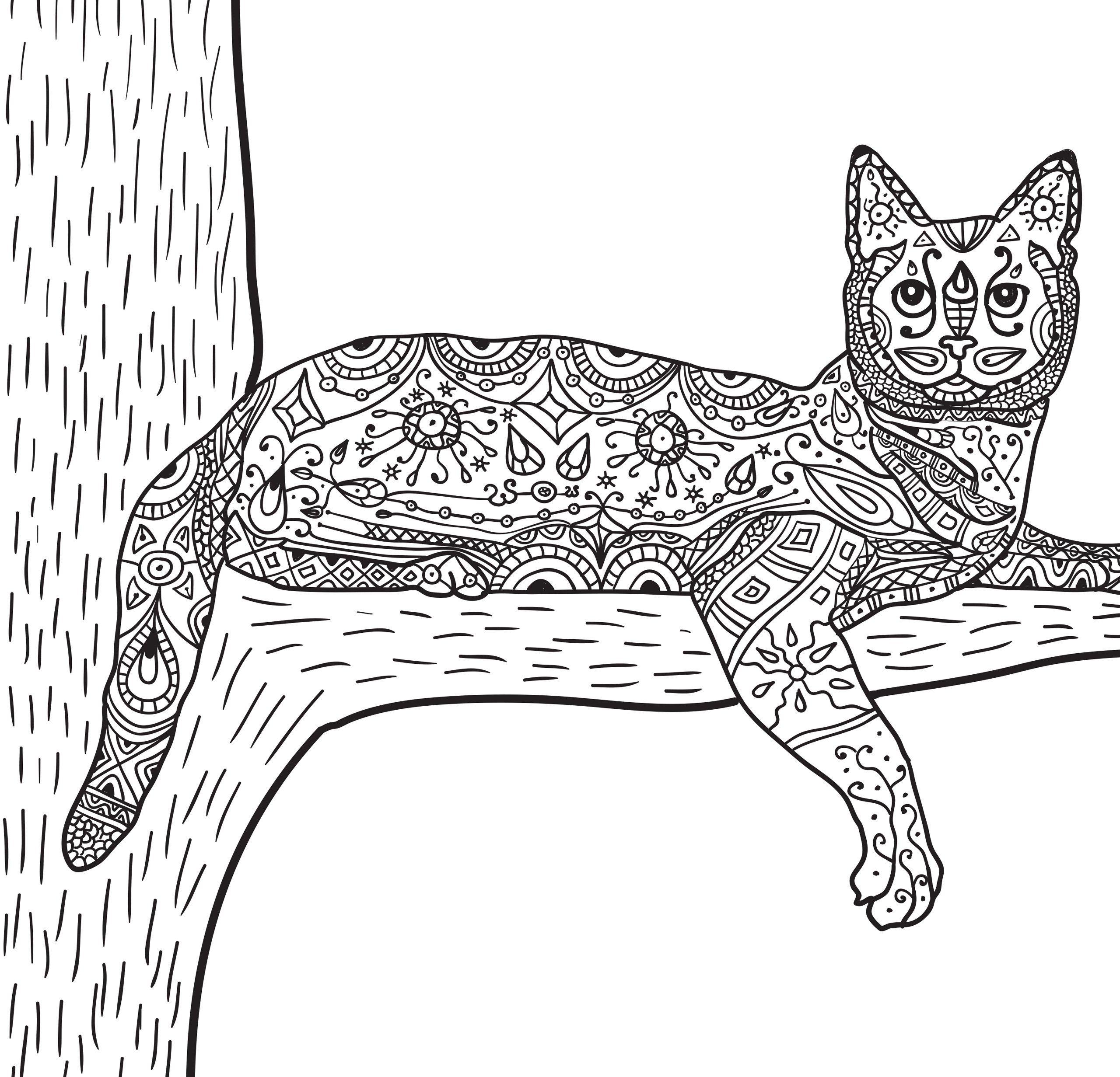 Кошка на дереве - Животные | Животные, Кошки, Раскраски