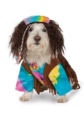 Dog · Hippie Pet Costume  sc 1 st  Pinterest & Hippie Pet Costume   Designer Dog Clothes and Accessories ...