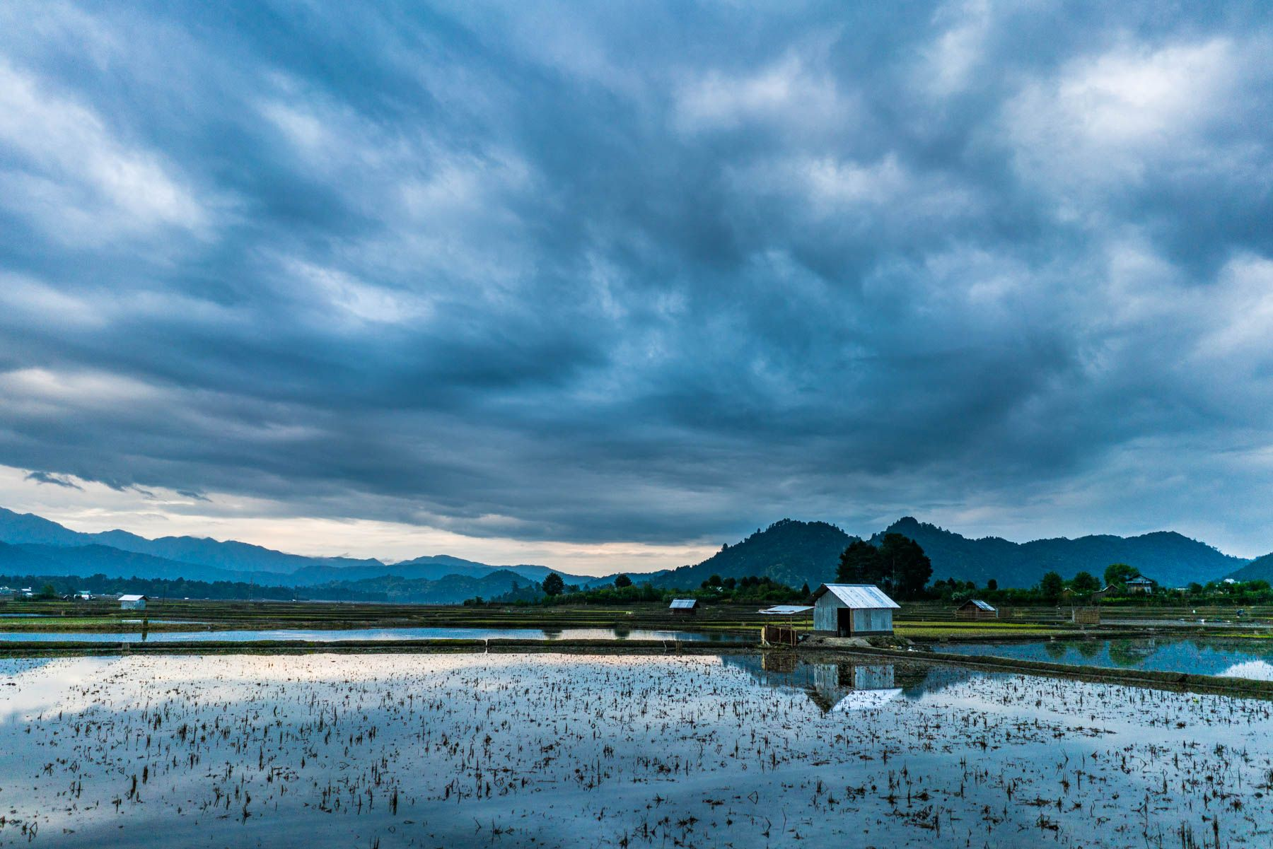 Best place to visit in India (Ziro Valley) Cool places