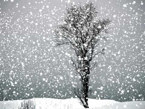 Let It Snow Let It Snow Let It Snow Falling Snow Wallpaper Winter Magic Snow