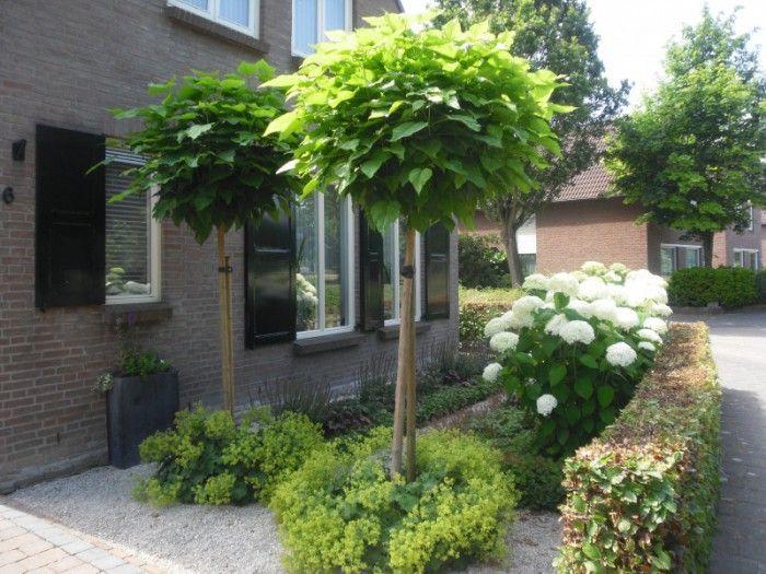 Voortuin idee tuin tuin tuin ideeën en moderne tuin