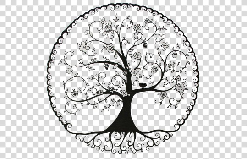 Tree Of Life Pine Drawing Symbol Tree Png Tree Area Black And White Branch Drawing Tree Of Life Drawings Symbols