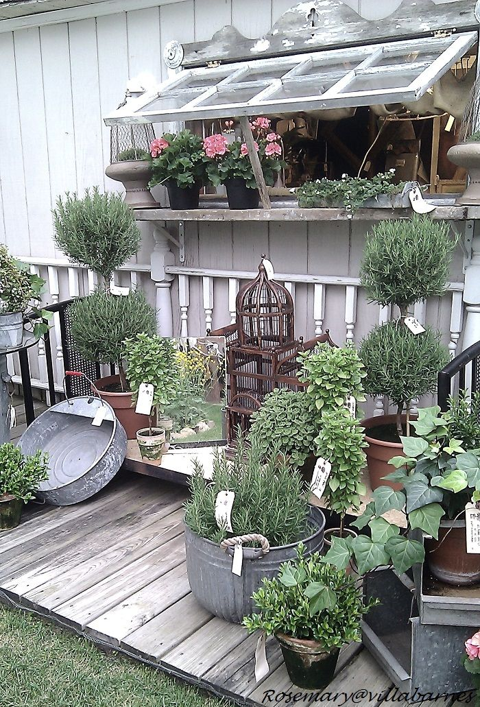 """Savvy City Farm, """"Shop The Shed event. Wish it was closer ..."""