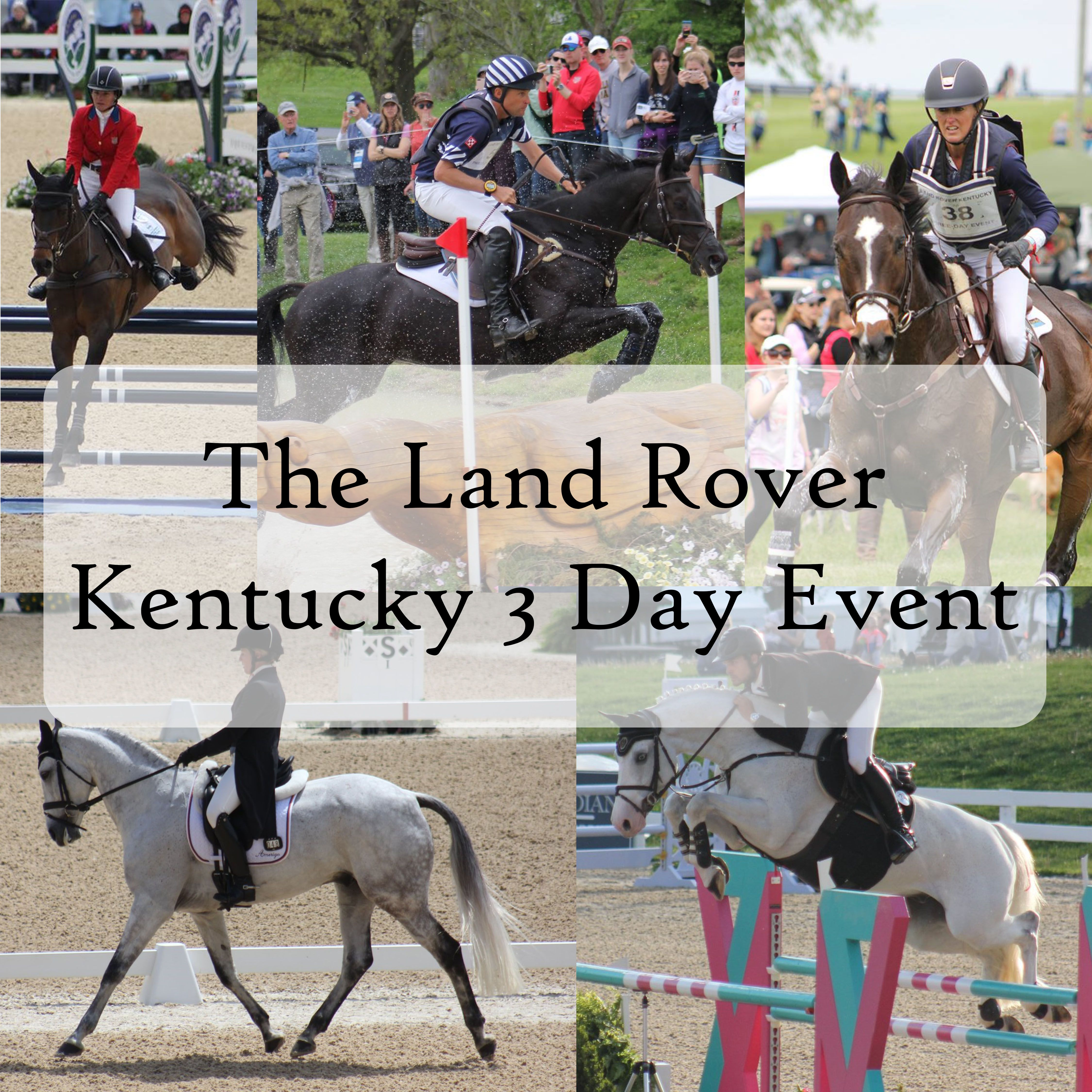 The Land Rover Kentucky 3 Day Event Eventing Horses Land Rover Kentucky