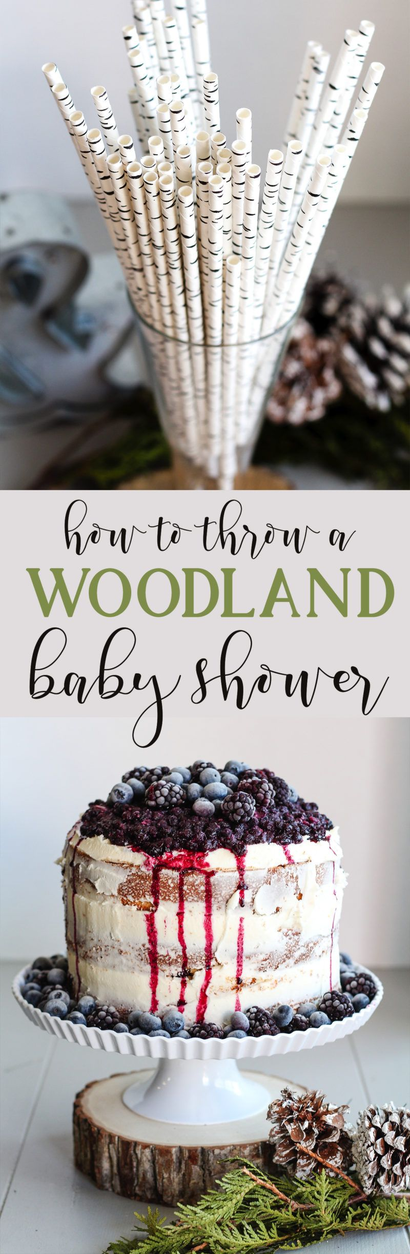 Diy Woodland Themed Baby Shower How To Woodsy Food And Party