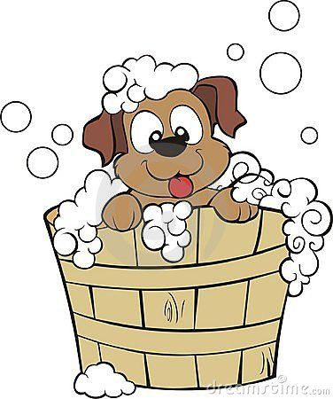 bathing.quenalbertini: Puppy Shower