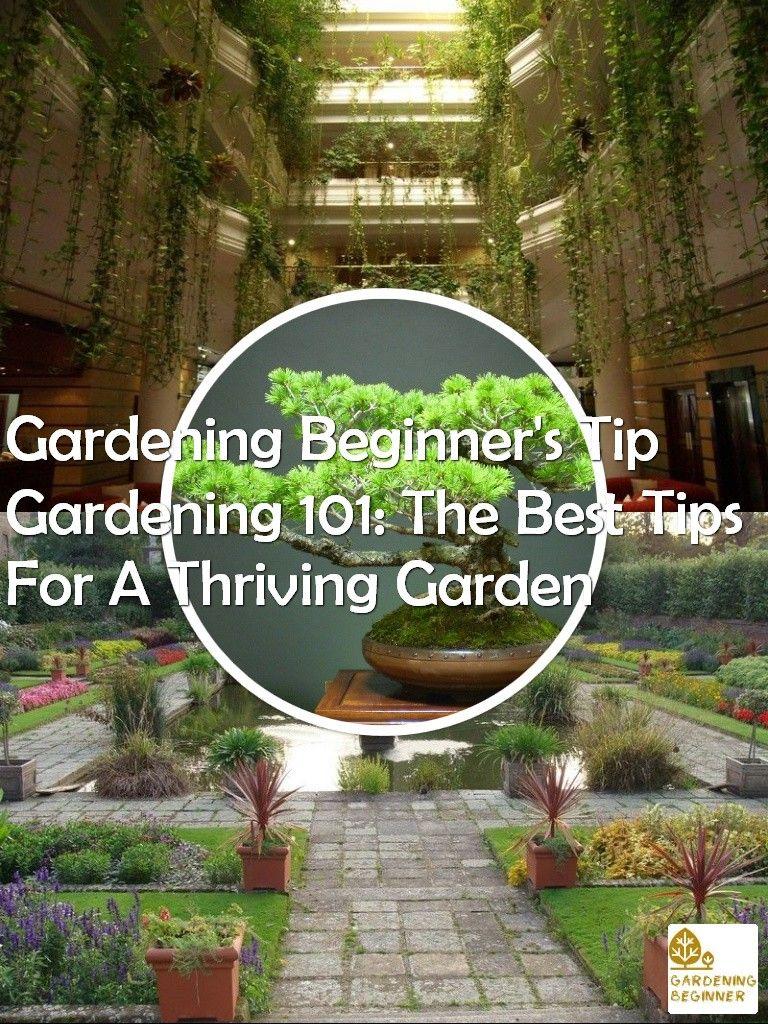bf145a28b3c641a794e5d6f60a70e7ec - What Are The Basic Gardening Techniques