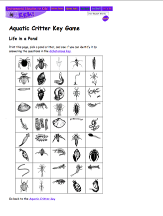 Practice using a dichotomous key online by trying to identify these ...