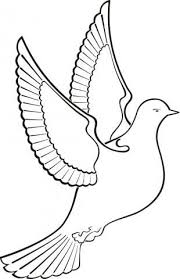 Holubice Omalovanky Pinterest Bird Coloring Pages Vector Free