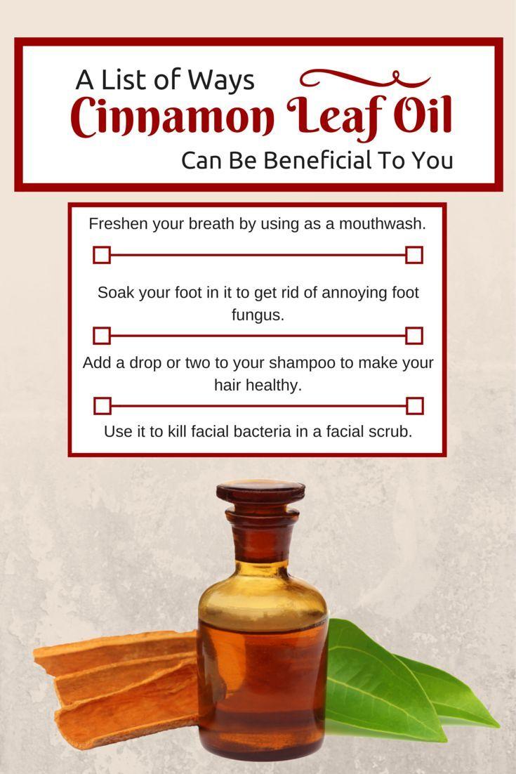 Cinnamon Leaf Essential Oil Cinnamon Leaf Oil Cinnamon Essential Oil Oils