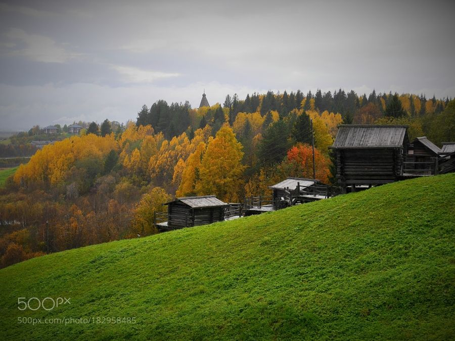 Popular on 500px : rainy autumn by marqarita693