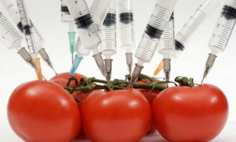 Food Safety Up Against Biotech Giants