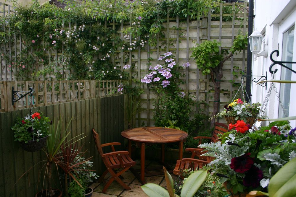 cottage patio with vine covered trellis | side patio ...