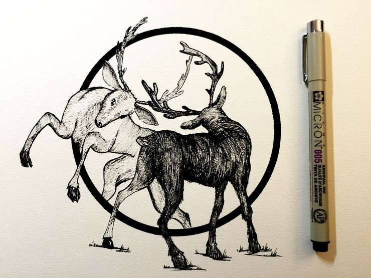 Beautiful Simple Line Art : Daily drawings by derek myers beautiful and