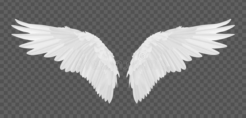 Vector Realistic Angel Wings Isolated On Transparent Background Aff Angel Realistic Vect Angel Wings Background Angel Wings Vector Angel Wings Images