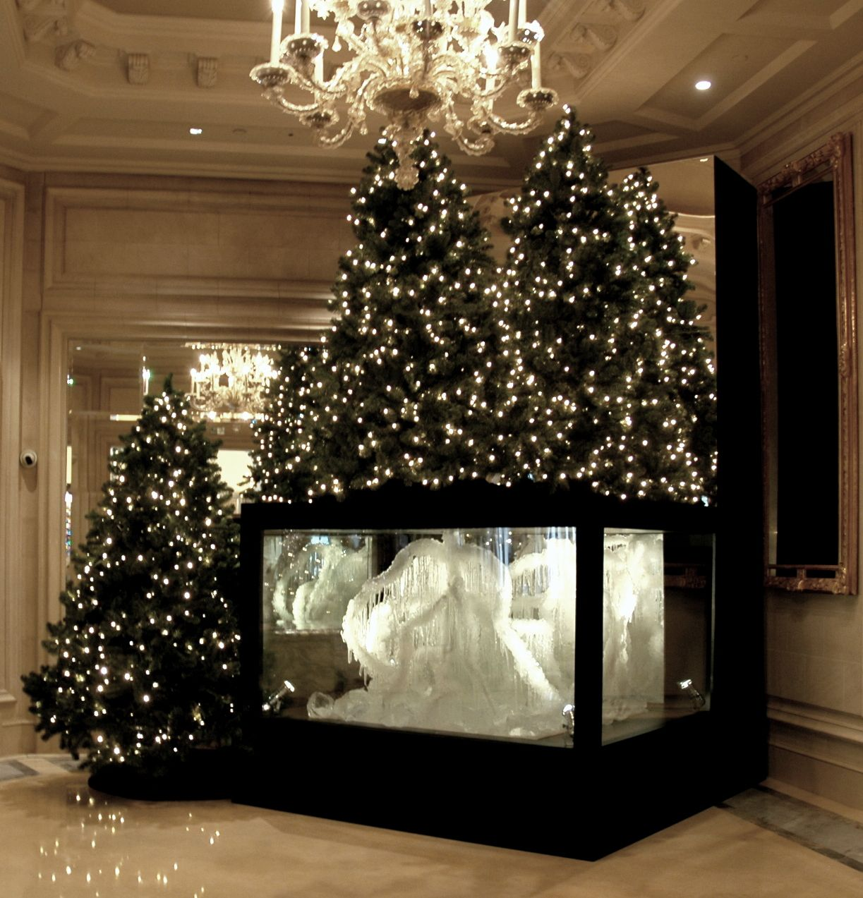 Lighting Of Christmas Tree 2014: This Year, @Four Seasons Hotel George V Paris Has Made The