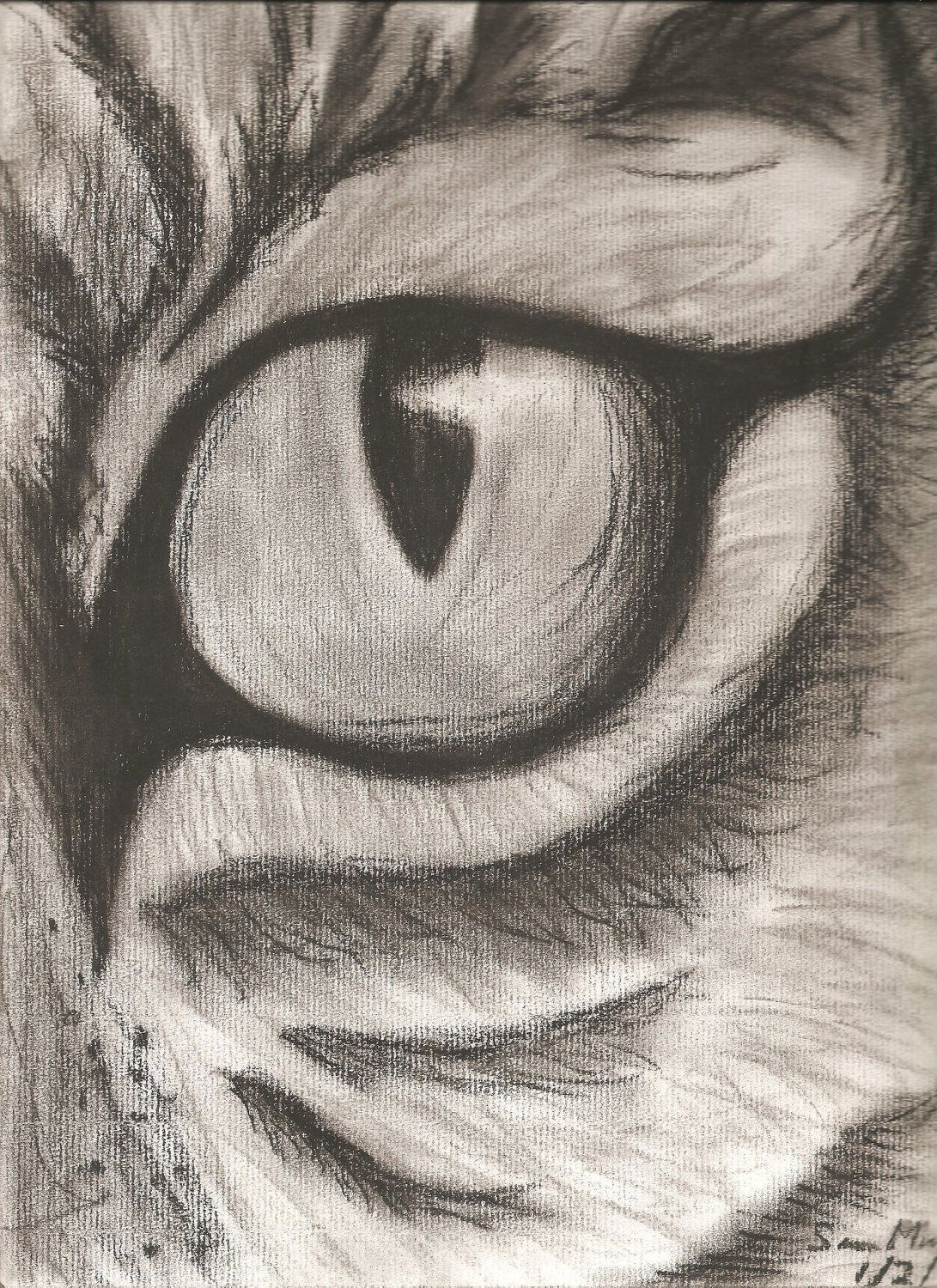 Charcoal Eye Drawing, Eyes Are My Favorite Things To Draw And This Is Just  Amazing