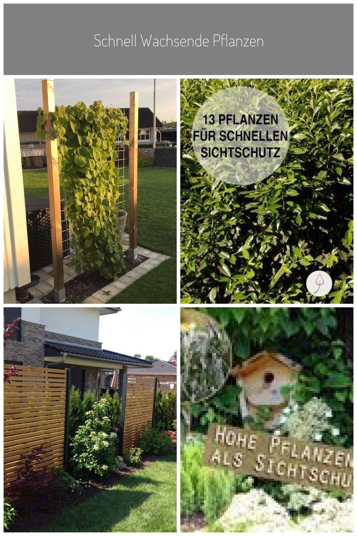 Garden 2019 In 2020 Mit Bildern Garten Landschaftsbau