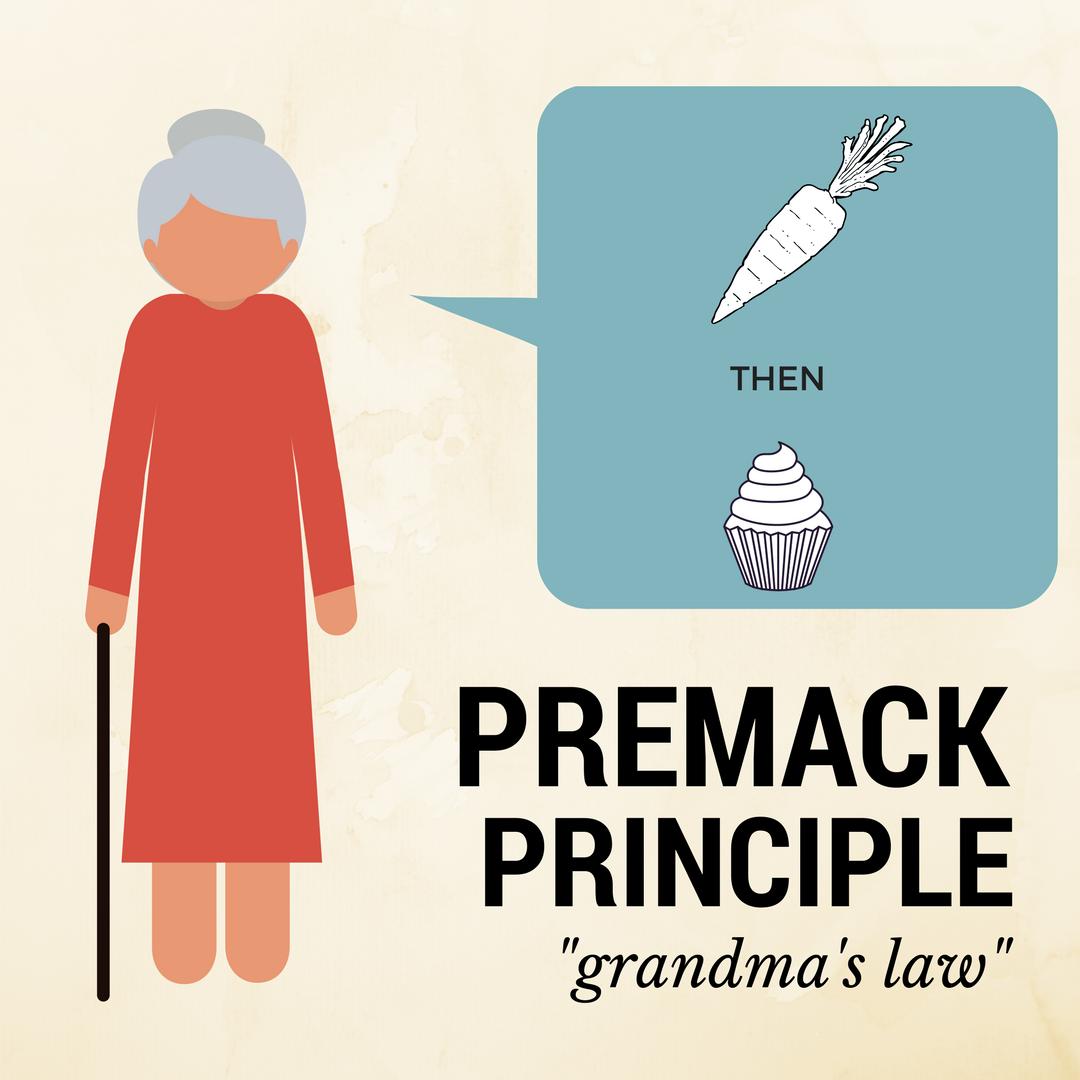 Sometimes Referred To As Grandmas Law The Premack Principle