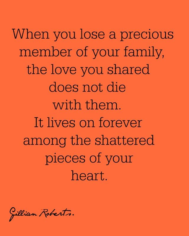 When You Lose A Precious Member Of Your Family The Love You Shared Does Not Die With Them It Lives On Forever Among The Shattered P Grief Grief Quotes Quotes