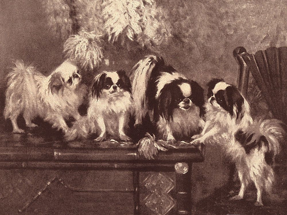 JAPANESE CHIN AND VASE OF FLOWERS CHARMING VINTAGE STYLE DOG ART PRINT POSTER