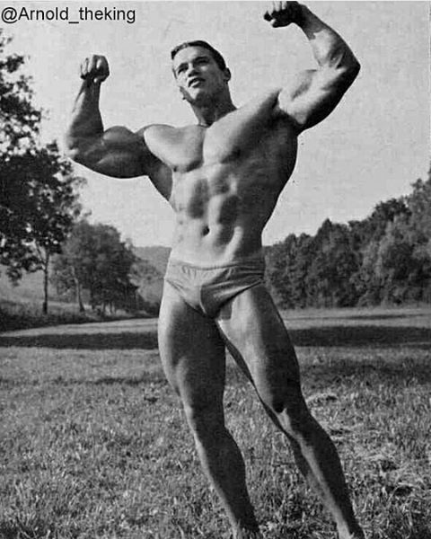 After a recent pic, here is a young Arnold posing, love it u003cspan - new arnold blueprint ebook