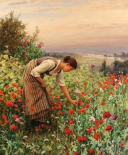 Girl Picking Poppies by Daniel Ridgway Knight - 22 1/4 x 18 1/4 inches Signed and inscribed Paris paris salon french academic genre rolleboise women in gardens figures figurative flowers