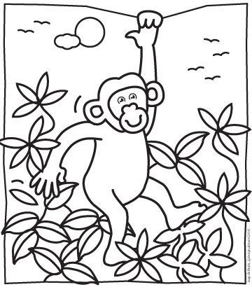 kleurplaat chimpansee kleurplaten kleuren en projecten