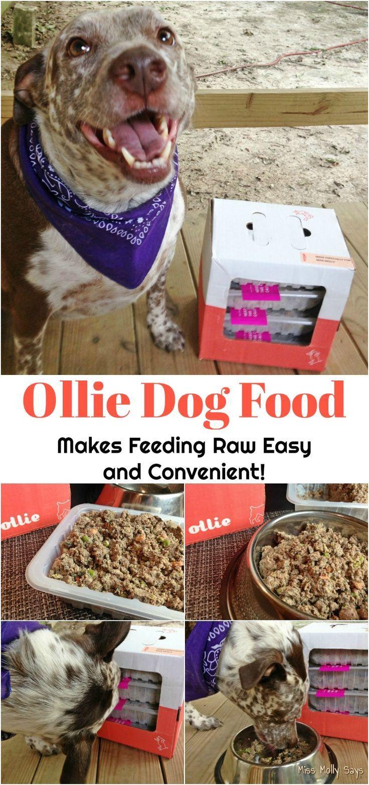 Ollie Dog Food Makes Feeding Raw Easy And Convenient Dog Food