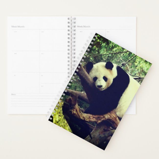 Panda Bear Planner #panda #pandas #bear #bears #panda #planner #dailyplanner #journal #dailyjournal #personalized #organizing #stayingorganized