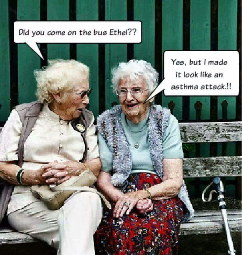 Did you come on the bus Ethel?... Old lady humor
