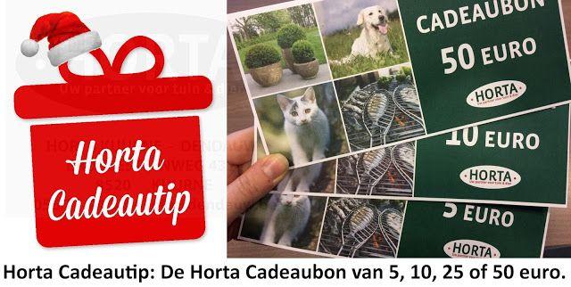 Horta Dendauw Kuurne: Kerstmis, Nieuwjaar, Verjaardag, .... een cadeautj...