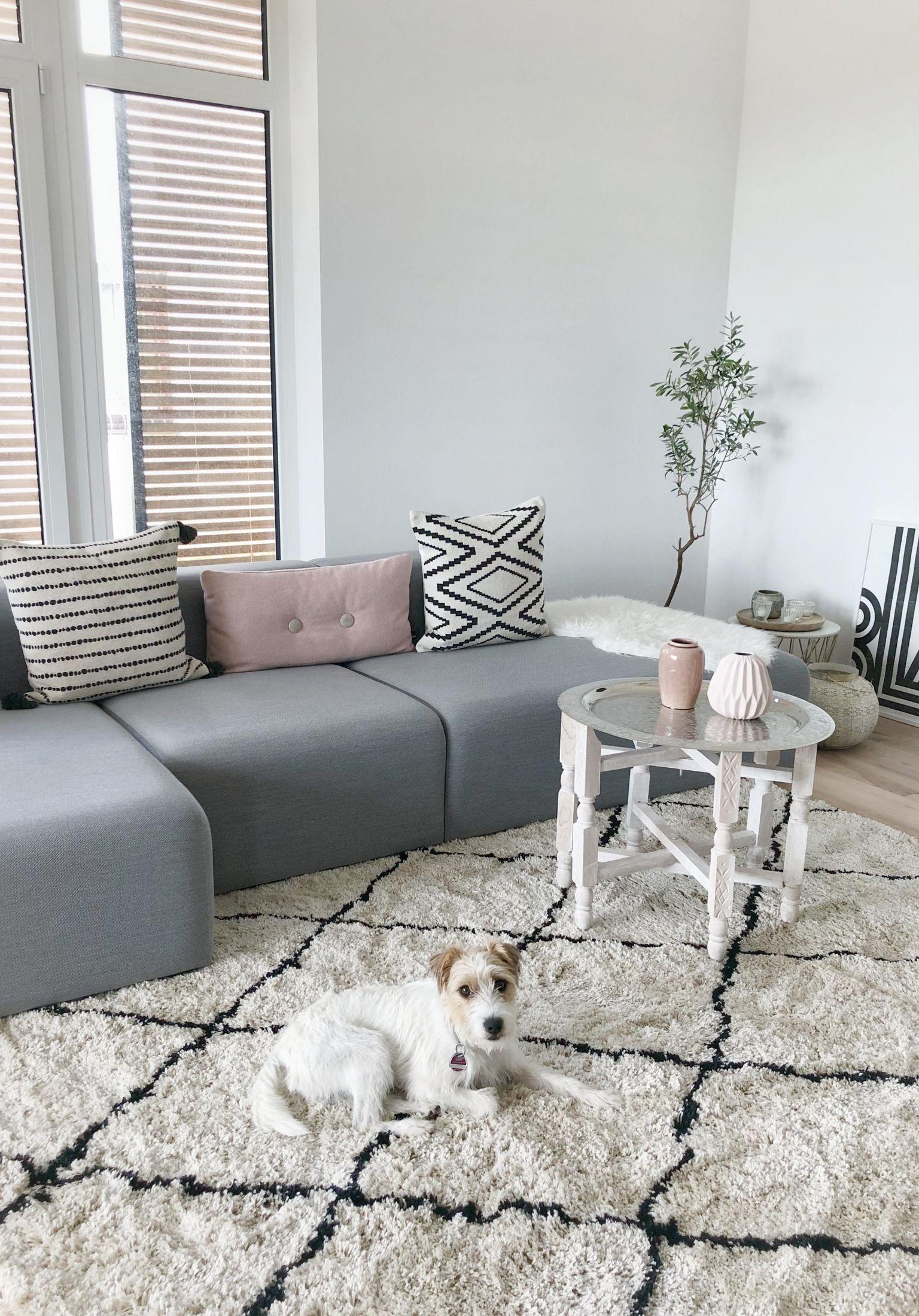 Neuer Teppich ist eingezogen! #teppich#wohnzimmer#whitehome#homelove