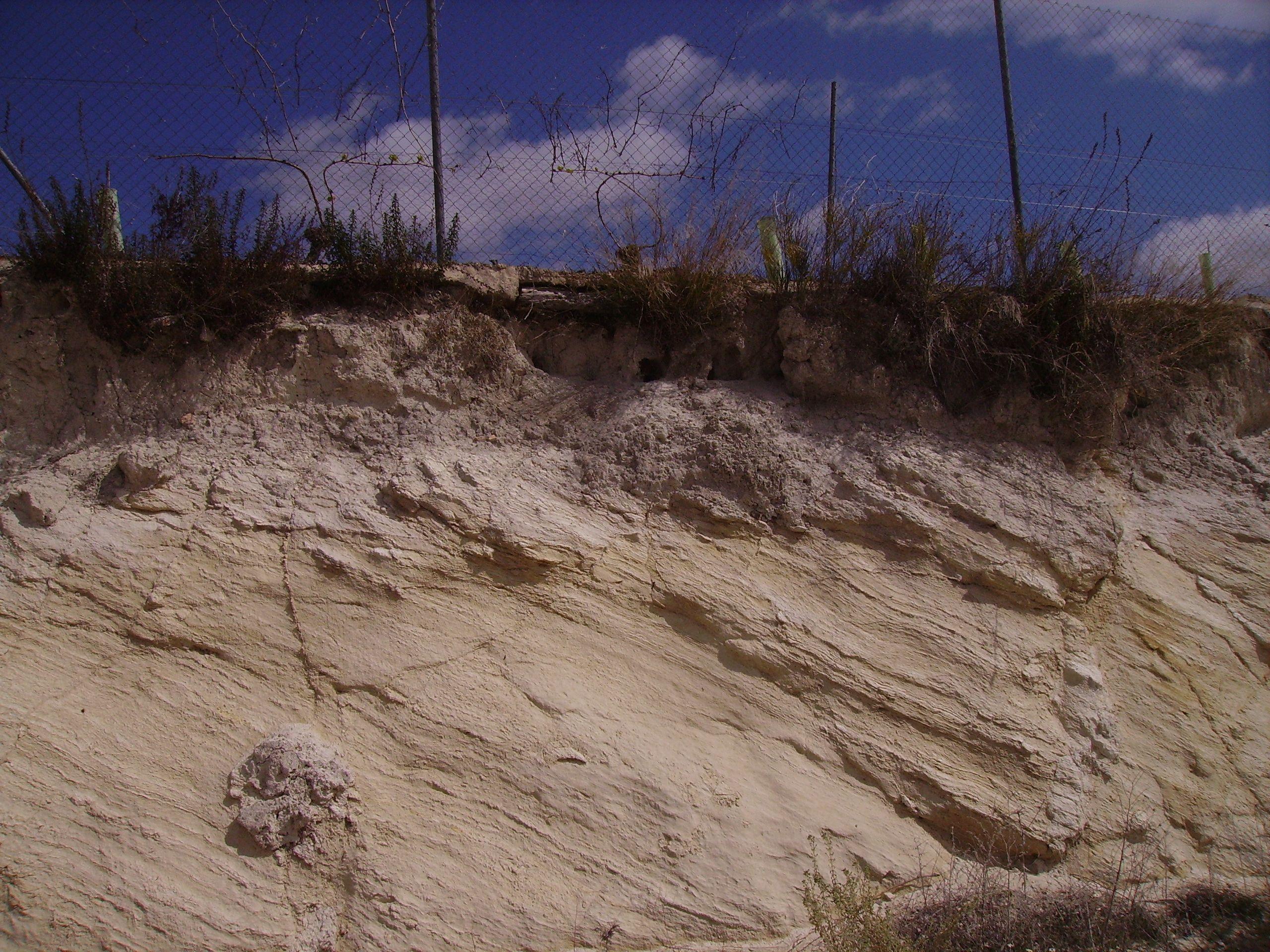Perfil de suelo en Moriles