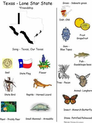 Texas State Symbols Mini Poster Worksheet Texas History