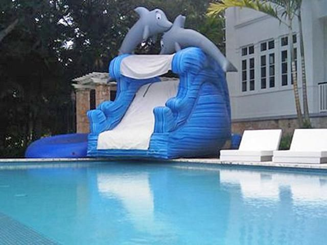 Dolphin Water Slide No Pool My Florida Party Rental Water Slide Rentals Water Slides Bounce House Rentals