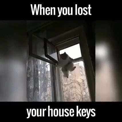 You Be Like When You Lost Your Keys Gif On Imgur Key Losing You House Keys