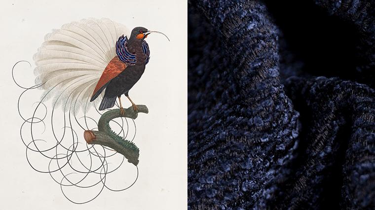 Press release Moooi releases Extinct Animal Fabrics