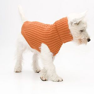 Cable Knit Dog Jumper - shop by recipient