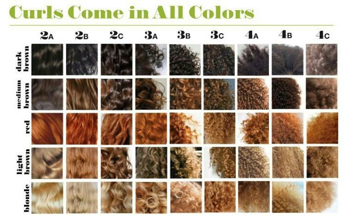 Hair Types In Different Colors I M A Combination Of Mostly 3a But Also 2c And 3b And Sometimes A Small Amoun Natural Hair Styles Curly Hair Styles Hair Type