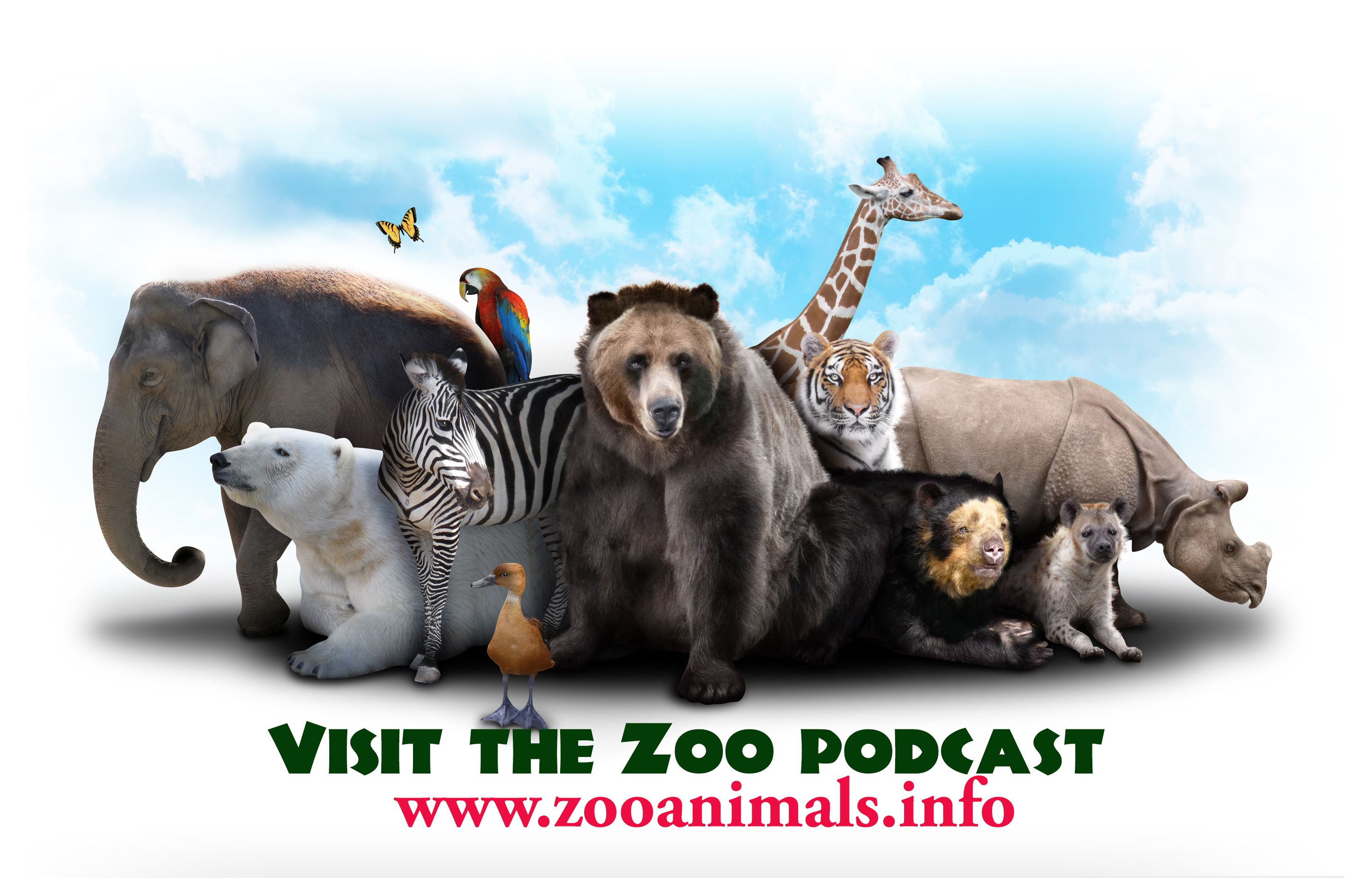 The Visit the Zoo Podcast main website completely ...