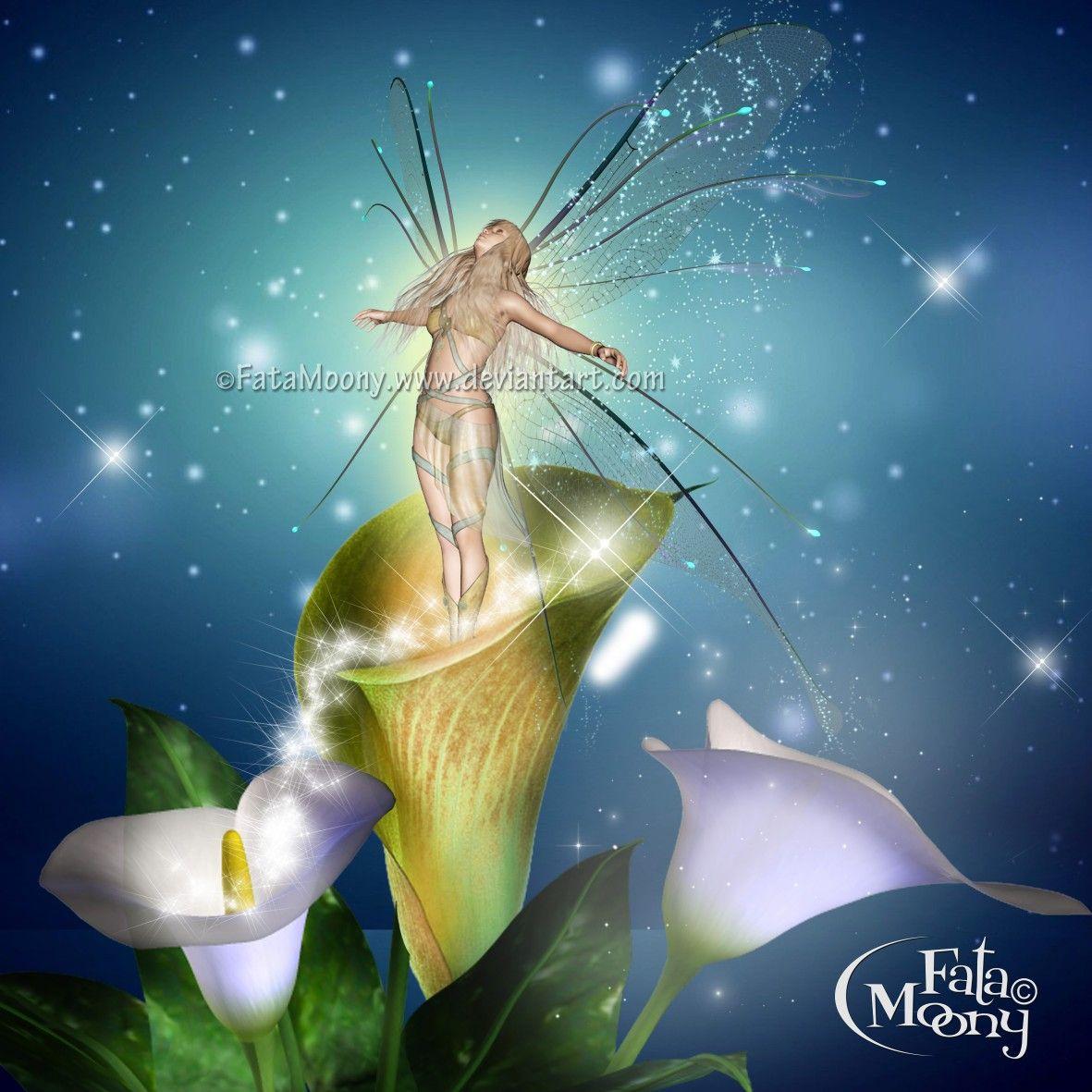 Kissing Wisteria Faeries/Fairies Fantasy Art 11x14 Poster