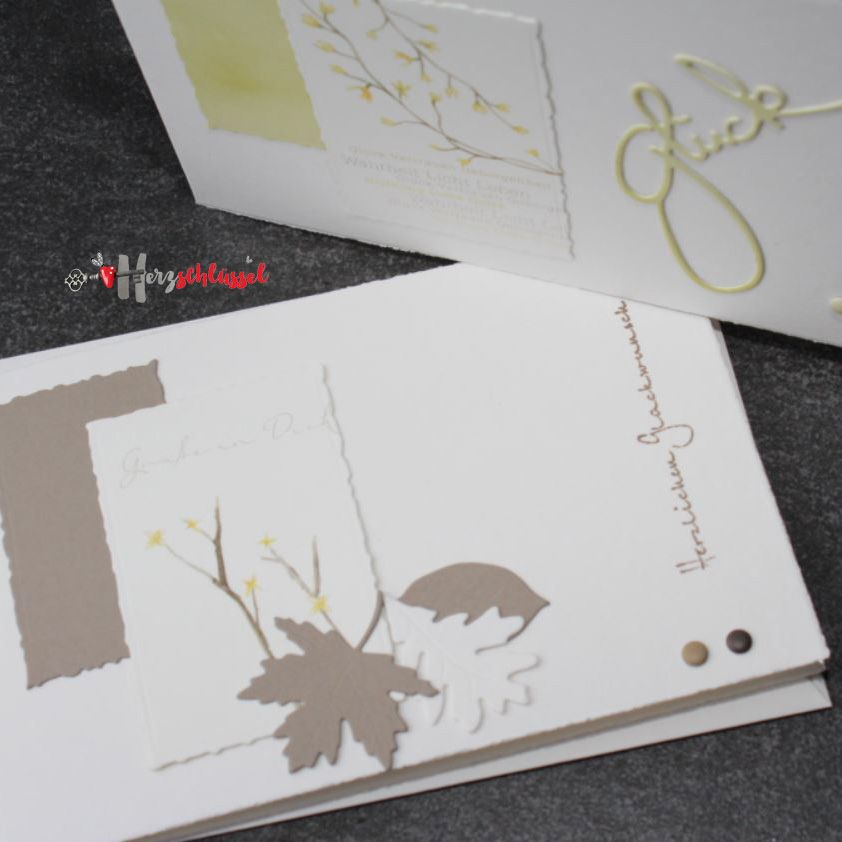 Herzschlüssel: Geburtstagskarten Teil 2, Alexandra Renke, Stampin Up ...