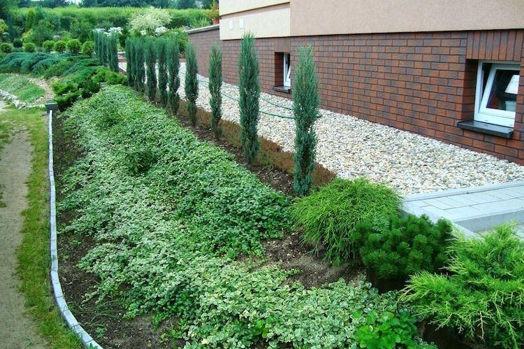 Gartengestaltung Hanglage gartengestaltung hanglage haus kies weiss bodendecker immergruen