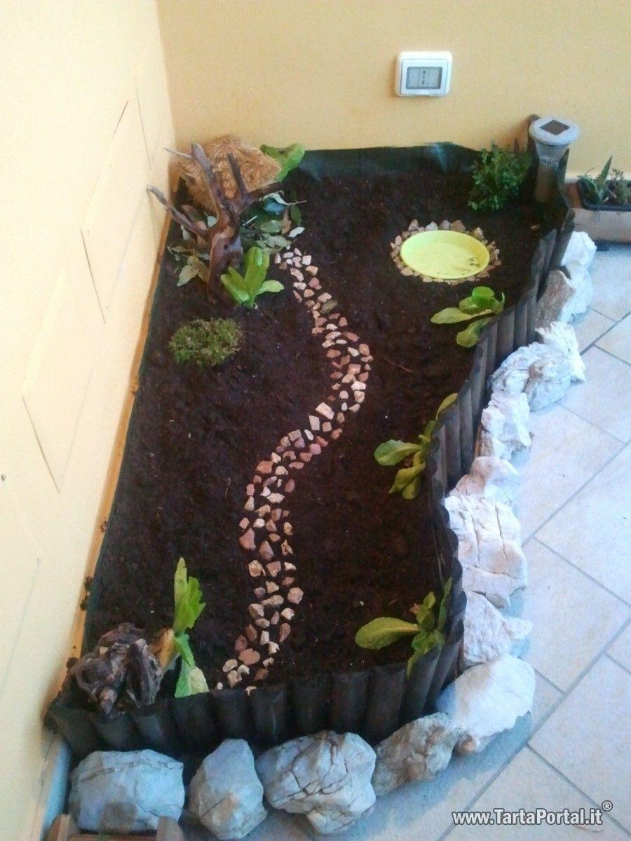 Terrario per tartarughe terrestri in terrazzo cerca con for Accessori terrario tartarughe